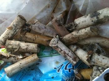 タバコ ゴミ.jpg